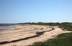 Newton beach at low tide