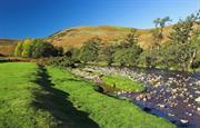 Ingram Valley