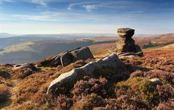 Heather Time on Derwent Edge