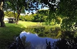 Beautiful pond in the lower gardens
