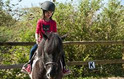 Onsite horse riding at Broomhill