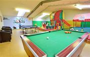 Table Tennis & Pool Table