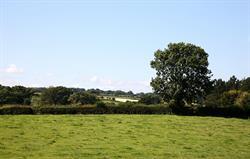 View across the park