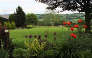Garden view across the Otter Valley