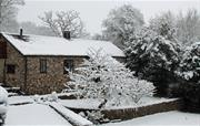 Wintery scene of Holly Cottage