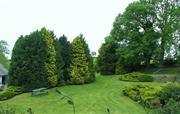 Rickyard Cottage - Garden