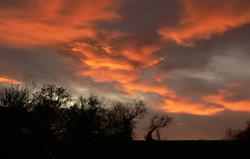Sunset over the farm