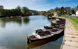 Rowing boats at nearby Ruswarp