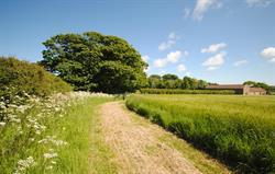 High Barn field walk
