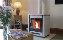 Coach House wood burning stove