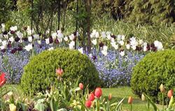 The Cutting Garden at Bruern