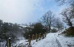 Winter, track to Wetton Mill