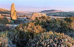 Preseli Hills Pembrokeshire