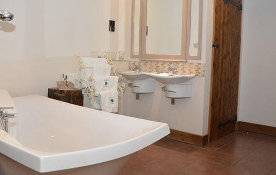 Master bedroom bath/washbasins
