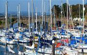Devon Coastal Scene