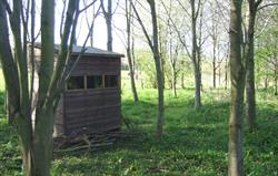 Woodland walk and wildlife hide