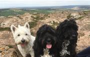 Crook Peak with friends
