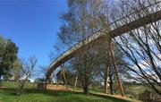 Sky Bridge at Westonbirt