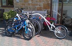 Hiring of bike for all the family