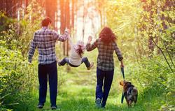 Family Walk In Woods