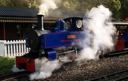 Lydia Steam Engine at Perrygrove
