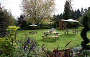 Picnic and Play on the Tea Lawn
