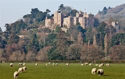 Take the steam train to Dunster