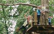 Go Ape Wyre Forest Bewdley