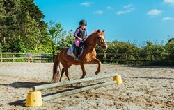 Jumping lesson at Broomhill Manor