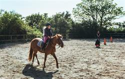 Riding lesson in the sand school