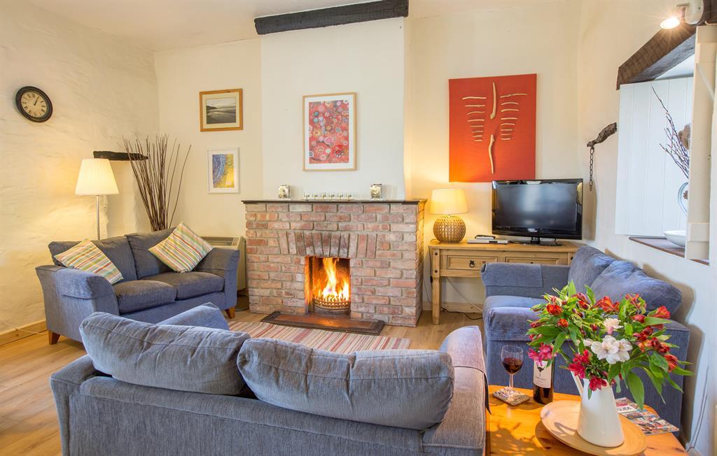 Bron y Felin Cottage Lounge