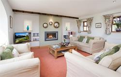 Cosy lounge and gas fire