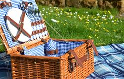 Free picnic hamper supplied