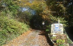 Entrance lane in Autumn
