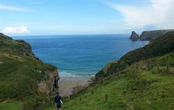 Bossiney Cove, nr Tintagel