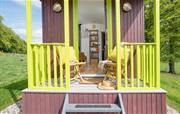 Ryegrass sunny terrace