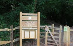 Woodland Trust walk near Cwrt Yr Al