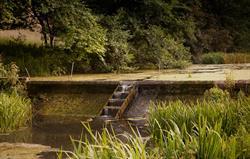 Cwrt Yr Ala lakes