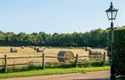 Streele Farm