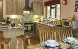 Wheal Matilda 3 Bed Lodge, Kitchen