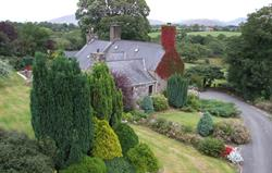 Betws Bach Olde Worlde Farmhouse