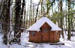 BBQ House Snow