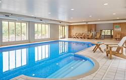 Indoor pool with bear chairs