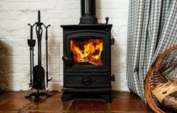 Wagtail wood-burning stove