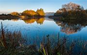 Megs Lake, Beacon Hill